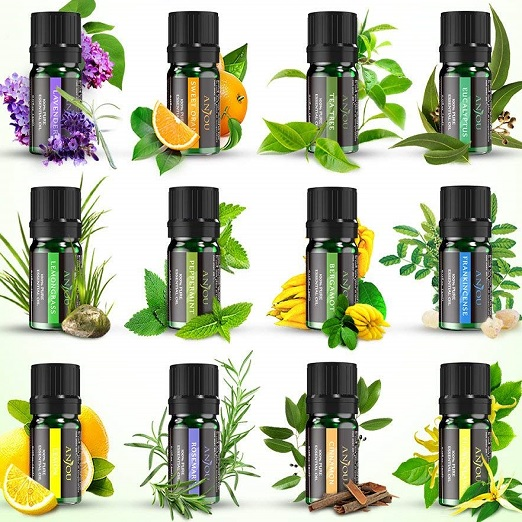 Aromatherapie Duftöl Anjou Ätherisches Öle Geschenkset (12 X 5 Ml 100 % Pur Lavendel, Orange, Teebaum, Eukalyptus, Lemongras, Pfefferminz, Bergamotte, Weihrauch, Zitrone, Rosmarin, Zimt Und Ylang-Ylang)